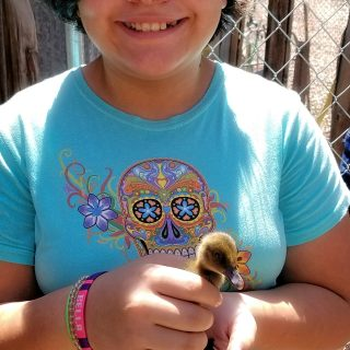 a young girl proudly holds a young baby chick at the gold king mine and ghost town petting zoo